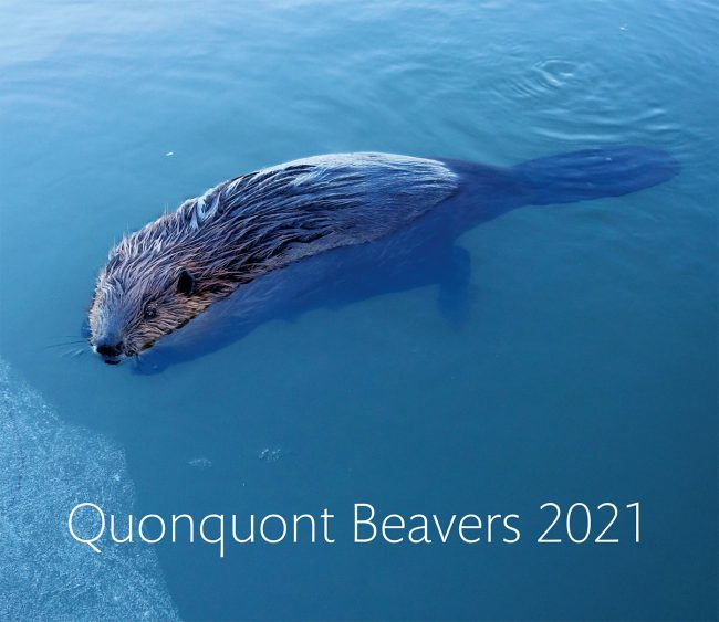 Quonquont Beavers 2021 Wall Calendar