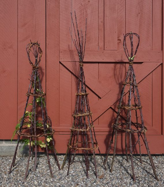 Twigs And Trellises—Making Garden Structures From Natural Materials